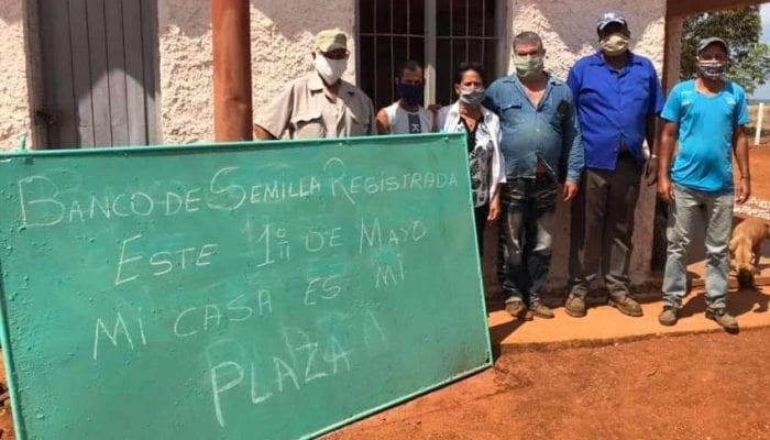 Banco de Semilla Registrada de Caraballo. Foto Yainely Guerra