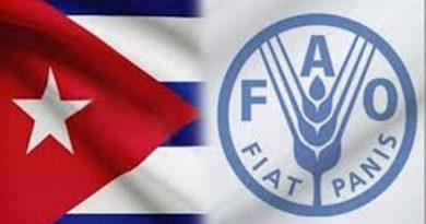 Comienza en Cuba un taller de cooperación bajo el auspicio de la FAO